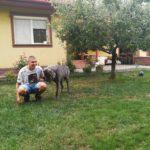 Zoznámenie so psom - kontakt