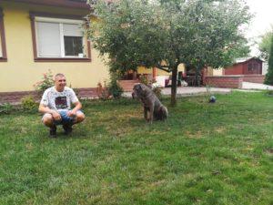 Ako sa zoznámiť so psom - základná pozícia