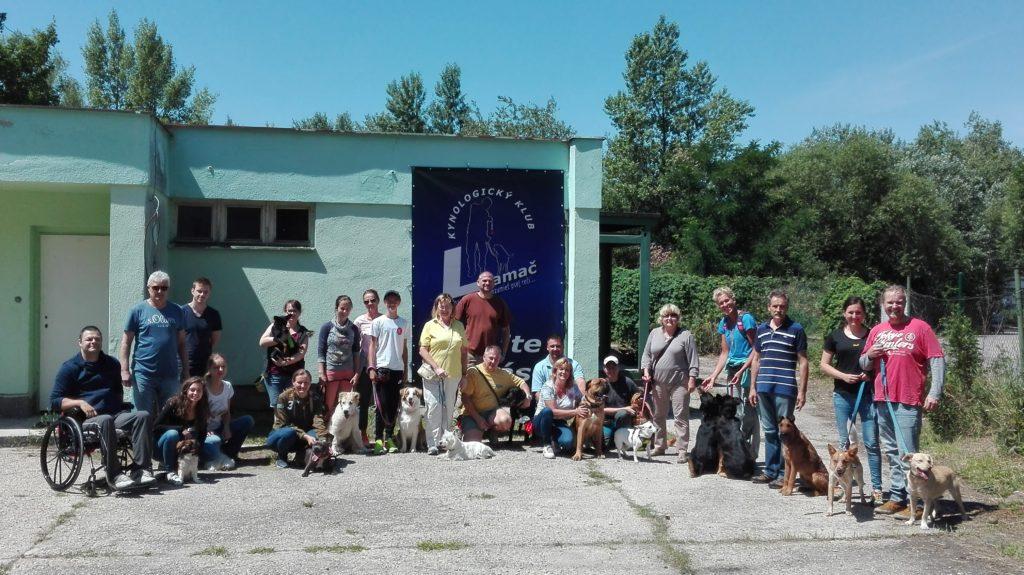 Výcvik psov Bratislava