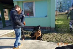 Vycvik psov Bratislava Lamac 039
