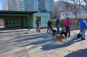 Vycvik psov Bratislava Lamac 058