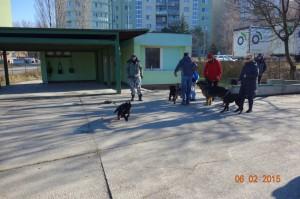 Vycvik psov Bratislava Lamac 069